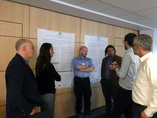 MAGNITUDE 1st MAB meeting poster session
